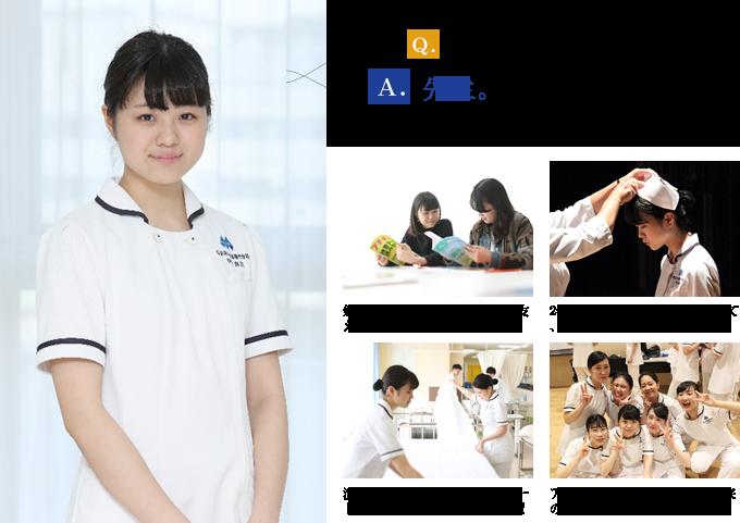 神奈川県立上矢部高等学校出身